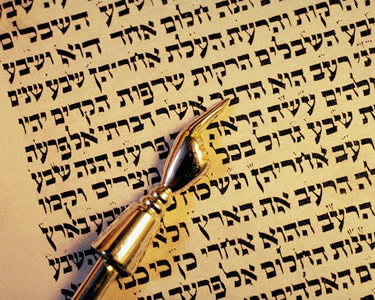 Tidbits of Torah